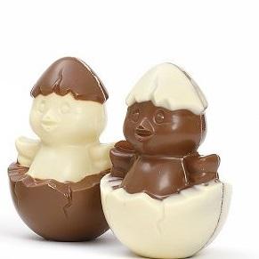 pulcini di cioccolato