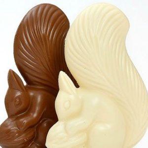 scoiattolo di cioccolato